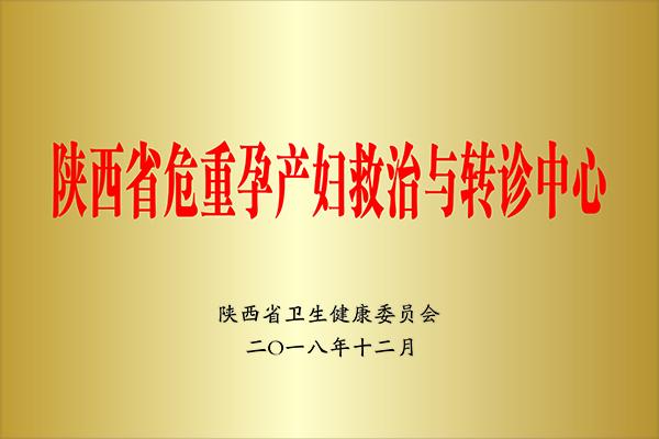 陕西省危重孕产妇救治与转诊中心